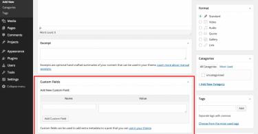 admin-custom-field-wordpress-post-1024x796-techblogcorner