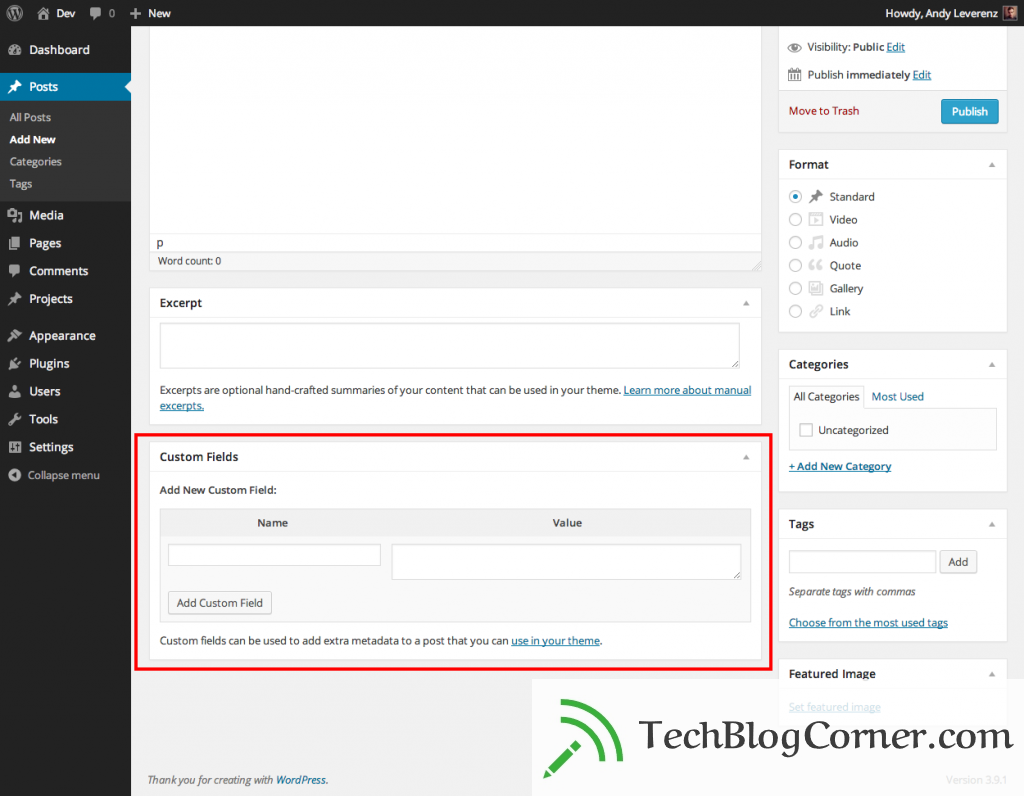 admin-custom-field-wordpress-post-1024x796-techblogcorner