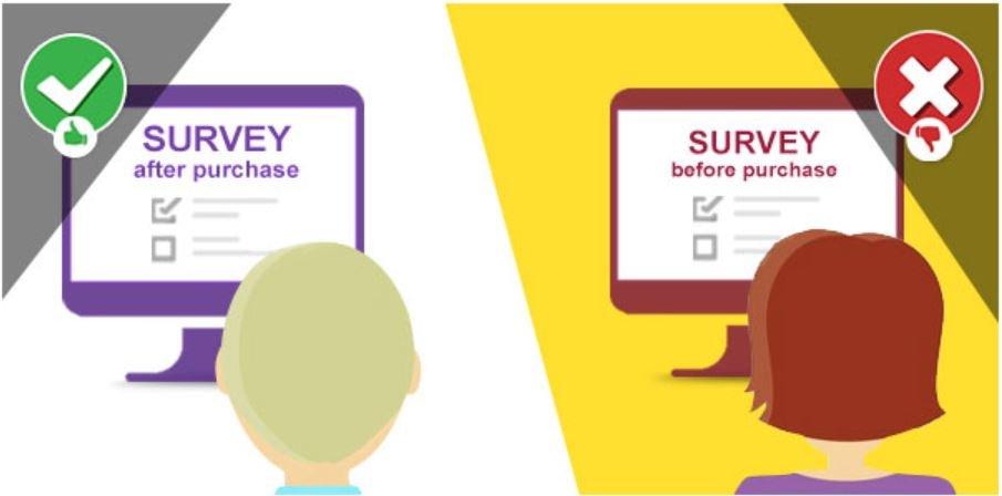 web-Survey
